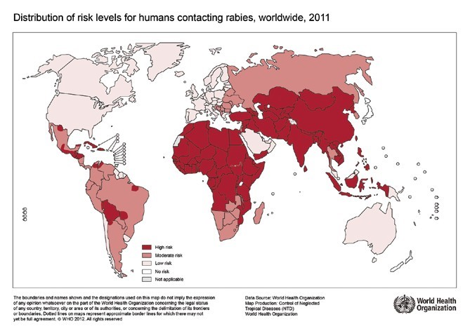 Figure 1.  WHO map – Distribution of Risk levels for humans contacting rabies, worldwide, 2011
